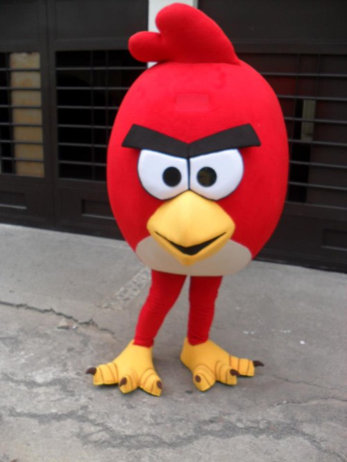 angry birds show contratar
