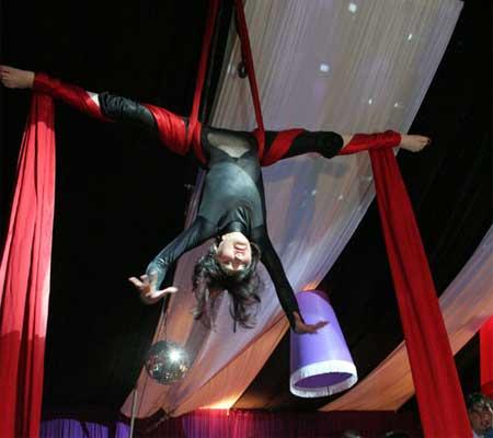Contratar Show de Circo