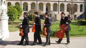 Contratación de Sul Tasto, cuarteto de cuerdas