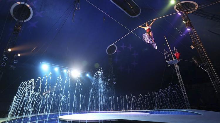 circo splash contrataciones