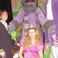 La Princesa Encantada en el Reino del Dragon