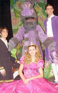 Contratar a La Princesa Encantada en el Reino del Dragon