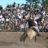 Expo Criollos Chascomus 2012